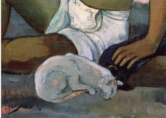 Gogenove mačke